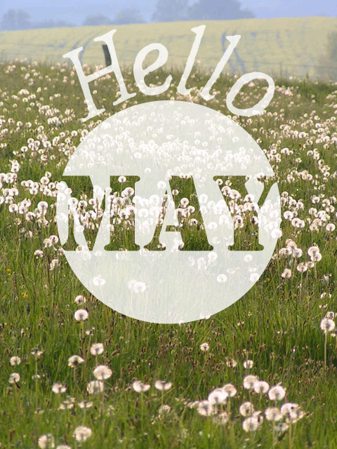 Format portrait de l'illustration Hello May