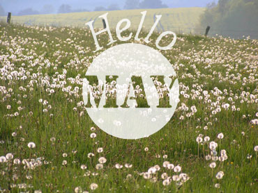 carte Hello May